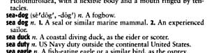 seadog definition