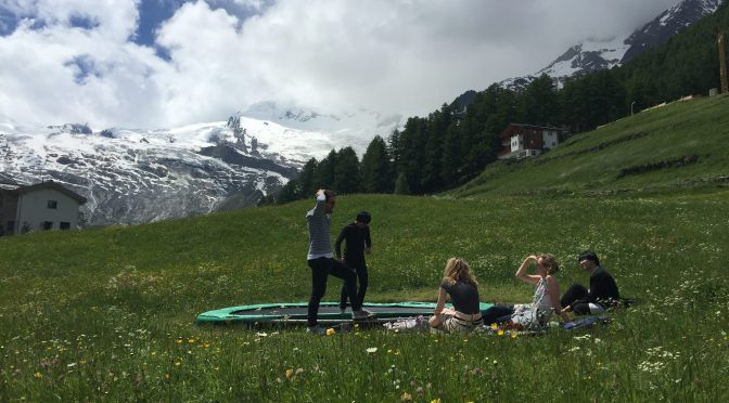 OPEN CALL: SAAS-FEE SUMMER INSTITUTE OF ART BERLIN. Art and the Poetics of Praxis in Cognitive Capitalism. DEADLINE  JUNE 19, 2018.